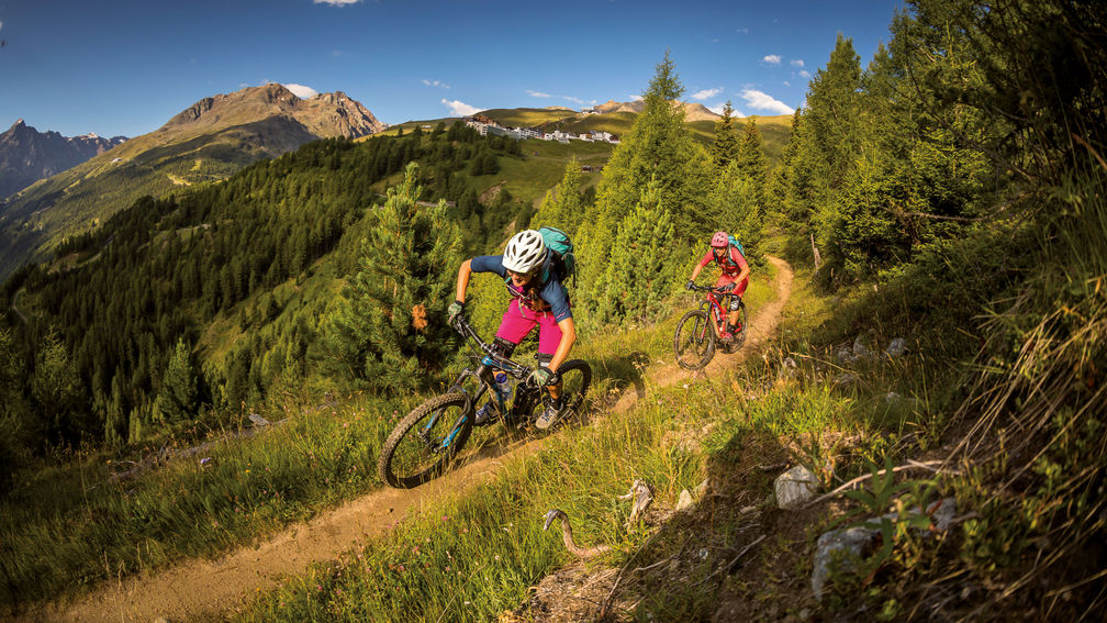 MOUNTAIN BIKE HOLIDAYS: SIGNATUR TRAILS